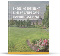 choosing-the-right-kind-of-landscap-maintenance-firm